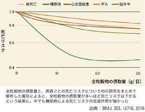 糖質最前線バランス食特集:トピックス=はくばく、日本人の食物繊維摂取源に穀物…