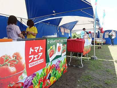 カゴメ名古屋支店、リトルワールドとコラボでトマト祭り