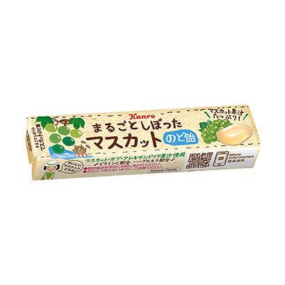 「まるごとしぼったマスカットのど飴 スティックタイプ」発売(カンロ)