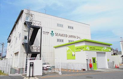 シーウィード・ジャパンの乾燥ひじき。主にふりかけなどの加工用原料として出荷されている