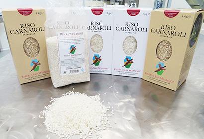 「米」のイタリア(中)品種改良、リゾットのために