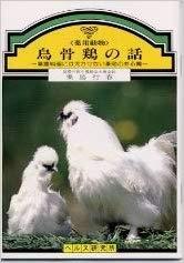 烏骨鶏の話