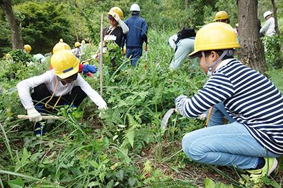 日本水産、鳥取県緑化推進委員会「みどりの少年団交流集会」に協力