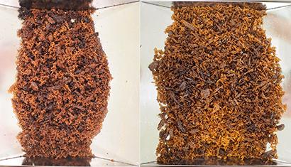 日食優秀食品機械・資材・素材賞特集:素材部門=日清オイリオグループ