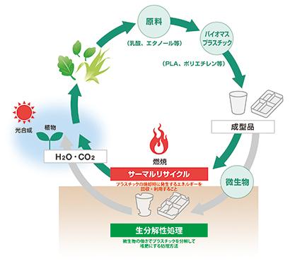 プラスチック資源循環戦略が始動 基本原則は3R+Renewable