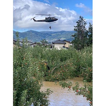 台風19号関連:長野=千曲川氾濫、収穫前のリンゴ直撃