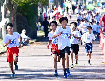 平和堂・S&B杯ちびっ子健康マラソン大会開催 1221人が参加