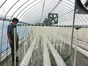 乾物・海産物・豆類特集