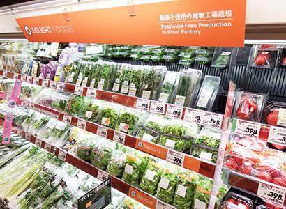 イオンライカム店の青果売場では施設内の植物工場の野菜をコーナー展開