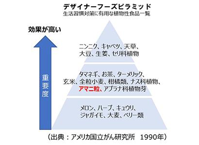アマニ事典(第6回)  デザイナーズフーズピラミッドに載っているスーパーフード【PR】