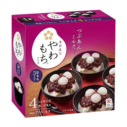 アイスクリーム特集:井村屋 3テーマで事業推進