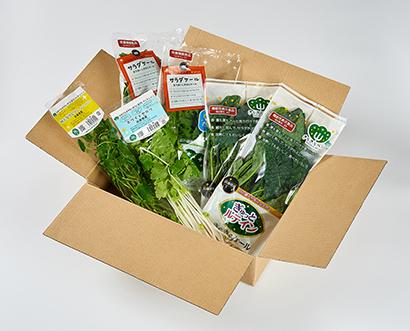 日本山村硝子、ネットショップで野菜販売