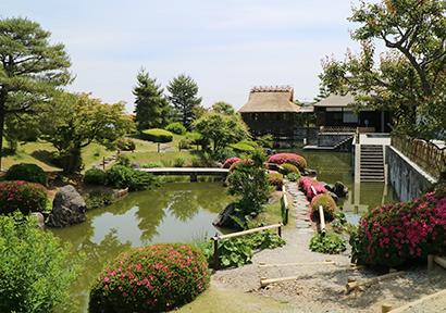 緑茶特集:ふじのくに茶の都ミュージアム お茶の歴史とこれから伝える