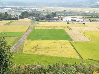 ◆九州食品産業特集:6次産業化推進の担い手基盤揃う 豊富な加工食品メーカー群