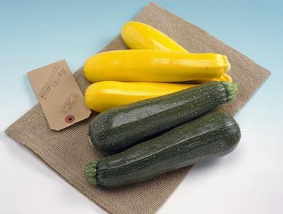 タキイ種苗、栄養豊富な夏野菜「ズッキーニ」でコロナ克服