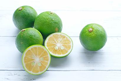 清涼飲料特集:業界支える機械・資材・素材=小川香料 和柑橘の供給強化