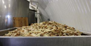 パンがビールに変身 英国の革新的な食品ロス削減
