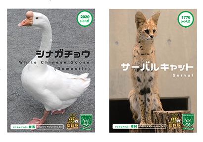 北海道夏季特集:コープさっぽろ、新たな環境教育で円山動物園と協働