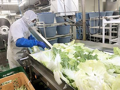 野菜・野菜加工特集:カット野菜業界の展望=タイヘイ・三浦浩氏に聞く ミールキ…