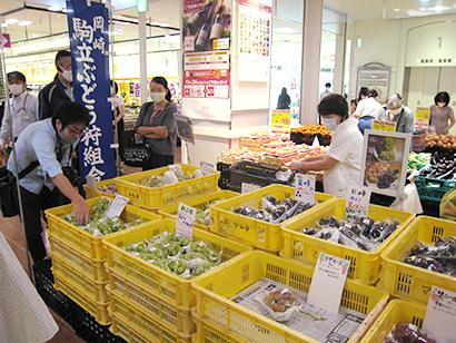 東海・北陸・静岡流通特集:イオンリテール東海カンパニー 地元産ブドウ販売拡大…