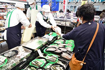 北近畿の日本海の漁港からの新鮮な天然魚を並べる
