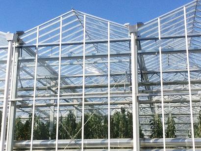 タカミヤ、オランダ式ガラスハウスを北茨城ファーム建設受注