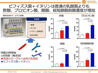 ビフィズス菌とイヌリンがもたらす発酵効果