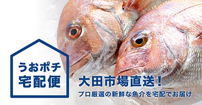 業務用品質の鮮魚を届ける「うおポチ宅配便」