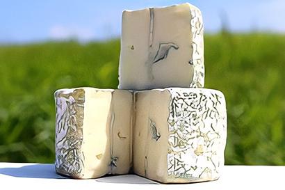 チーズ特集:ローカル発・国産チーズの挑戦=高秀牧場 酪農の魅力アピール