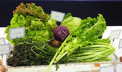 新潟食料農業大とホテルイタリア軒、コラボ試食会 外食に県産伊野菜