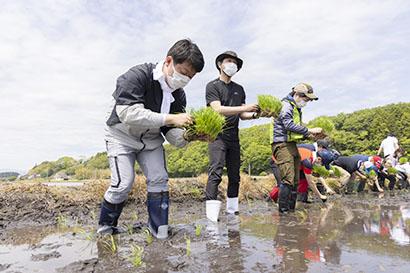 アイリスオーヤマ、福島県浪江町で田植え 東北農業の課題解決を