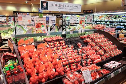 季節や用途に合わせた提案を行うトマト売場