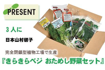 プレゼント:日本山村硝子『きらきらベジ おためし野菜セット』を3人に