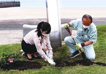 マルトモ、地域活性化へ伊予市で植樹活動