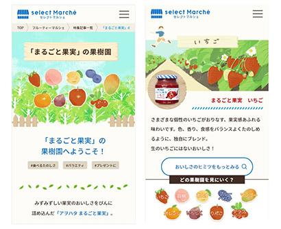 アヲハタ、「フルーティーマルシェ」開設 フルーツの魅力発信