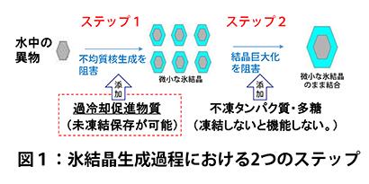 食品ニューテクノロジー研究会講演:関西大学・河原秀久教授