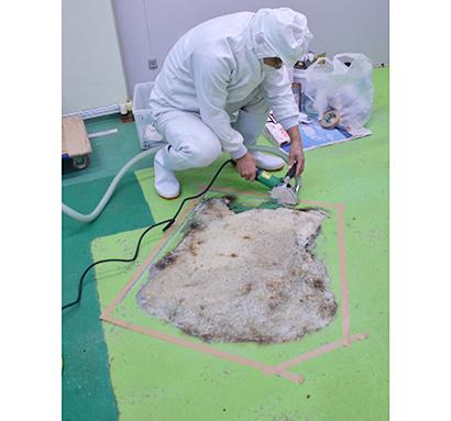 TOPIC・塗り床:食品工場における塗り床の役割と補修
