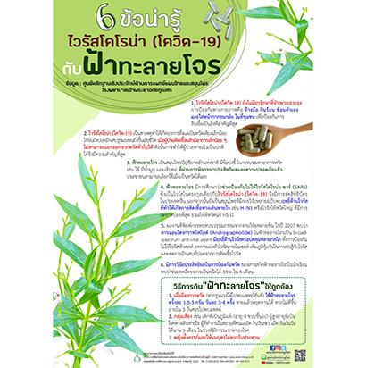 センシンレンの効用を訴えるために農業・共同組合省が作成したチラシ=提供写真