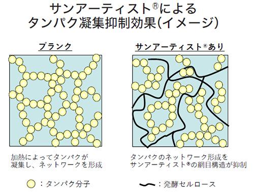 介護食品特集:三栄源エフ・エフ・アイ 加熱時のタンパク凝集を抑制