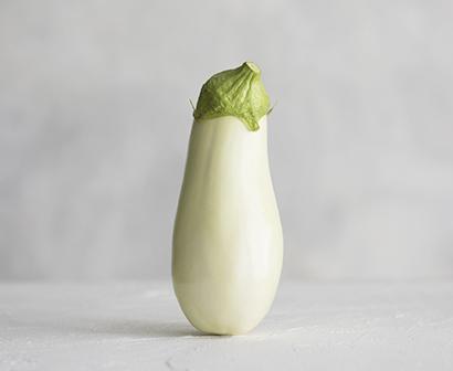 野菜・野菜加工特集:トキタ種苗 巣ごもりマンネリ打破