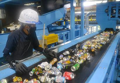 選別作業に当たる従業員。アルミ缶はよどみなく流れ続けた(彩源)