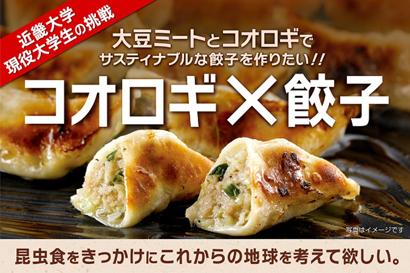 近畿大学現役大学生が「コオロギ餃子」のクラウドファンディングにチャレンジ