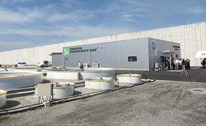 理研ビタミングループ、「理研食品 陸前高田ベース」稼働 海藻の陸上養殖施設
