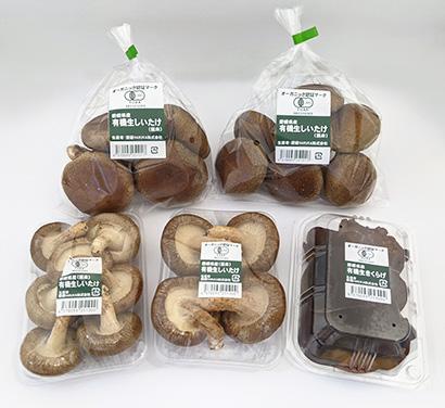 ベストプラネット、有機キクラゲ・生椎茸の増産体制整備 自社栽培に注力